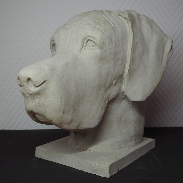 Dogge1