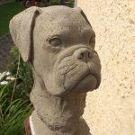 Hundebüste Boxer