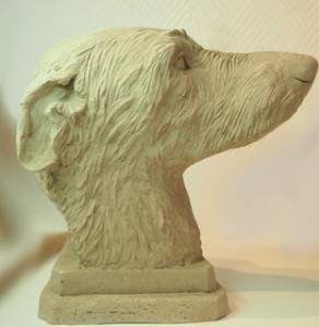 Scottish Deerhound   >>> Details