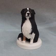 "Miniatur ""Australian Shepherd"""